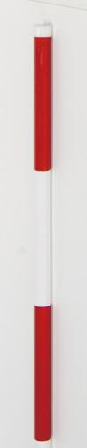 スノーポール(スチール製)剣先ありタイプ 2m 10本1組 【WT-1081】