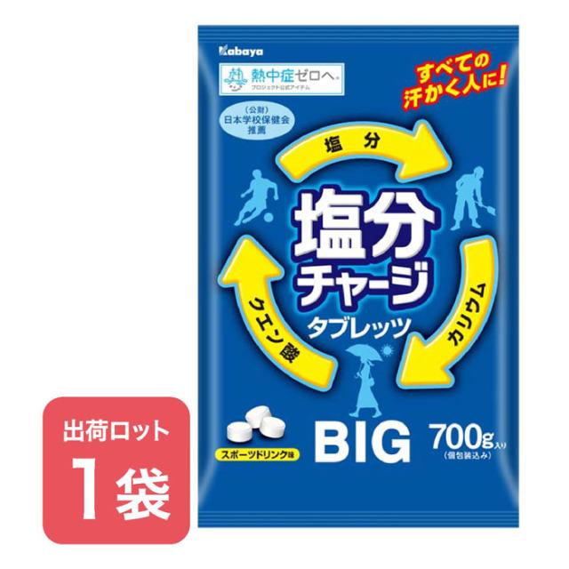 【法人・個人事業主様限定】N18-26 塩分チャージタブレッツBIG(700g約236粒)(1000407)