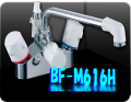 BF-M616H