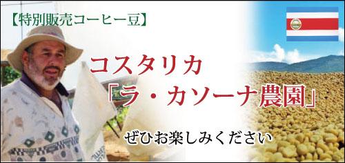 コスタリカ産ラ・カソーナ農園コーヒー豆を特別販売