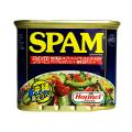 沖縄 お土産 うす塩スパム ナトリウム25%カット 脂質25%カット 沖縄限定ラベル SPAM スパム うす塩 340g
