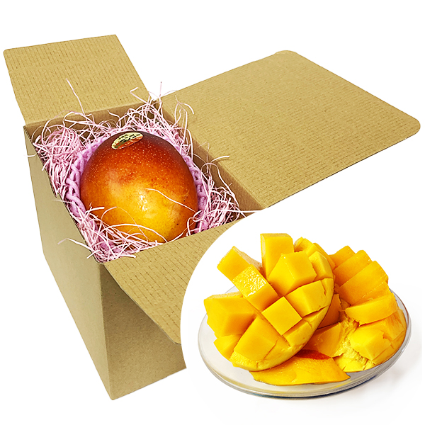 マンゴー 沖縄 お土産 果物 フルーツ 沖縄県産 完熟 アップルマンゴー 1個 約350g 冷蔵