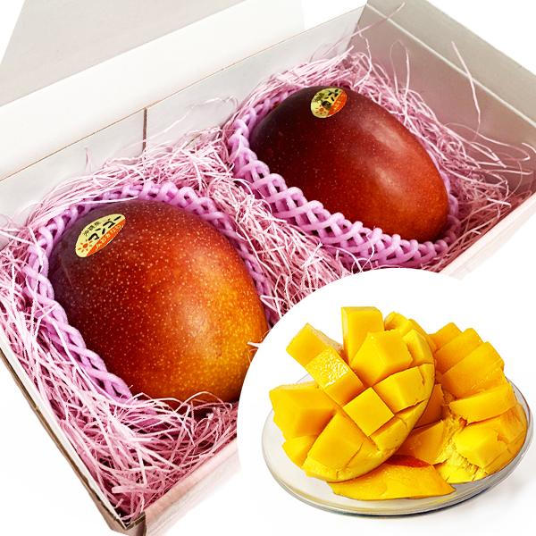 マンゴー 沖縄 お土産 果物 フルーツ 沖縄県産 完熟 アップルマンゴー 2個 約700g ギフトBOX付 冷蔵