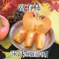 富有柿アイコン