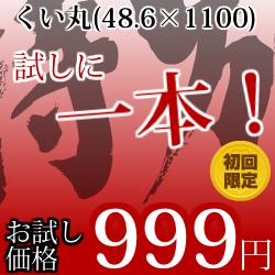 試しに一本!くい丸(48.6×1100L)
