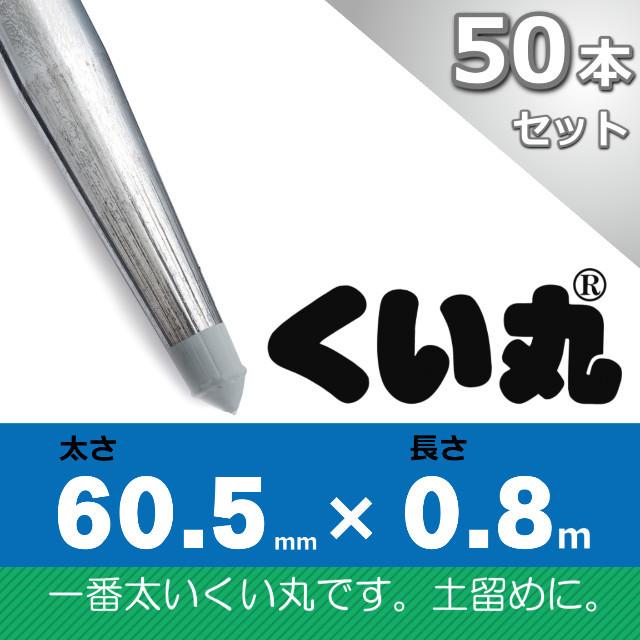 くい丸60.5×800L 50本セット