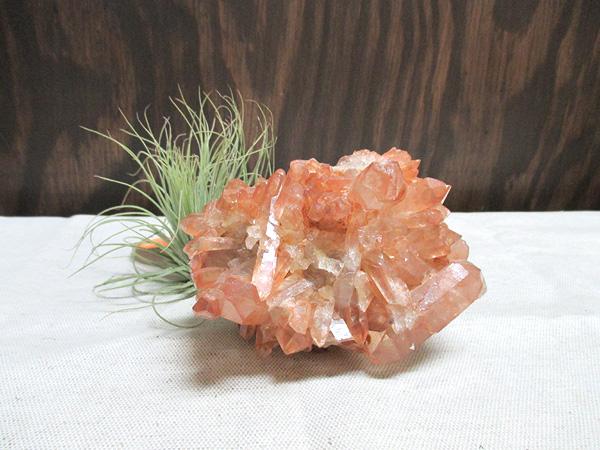 ブラジル産タンジェリーナ(タンジェリン)クォーツ水晶原石クラスター