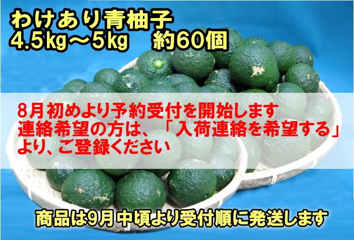 【わけあり青柚子/5kg箱入(内容量:4.5~5kg)/約60個】 柚子胡椒に最適