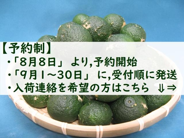 aoyuzu006.jpg