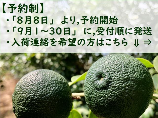 aoyuzu050.jpg