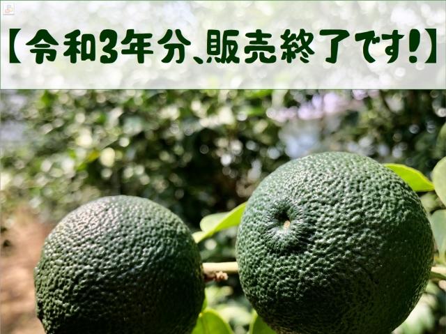 aoyuzu3232.jpg