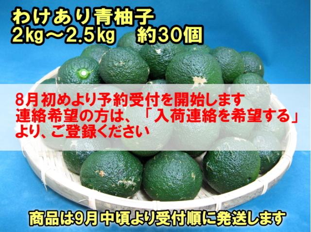 【わけあり青柚子/2.5kg箱入(内容量:2~2.5kg)/約30個】 柚子胡椒に最適