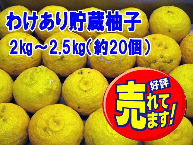 貯蔵柚子 2~2.5㎏