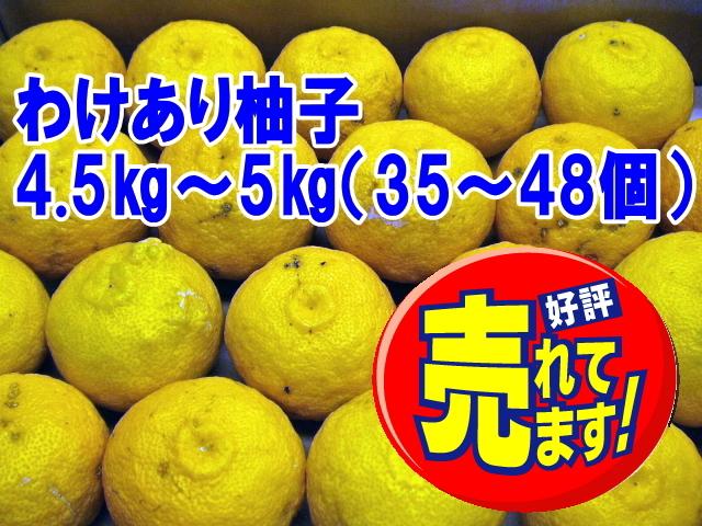 【わけあり柚子/4.5~5kg 35~48玉】