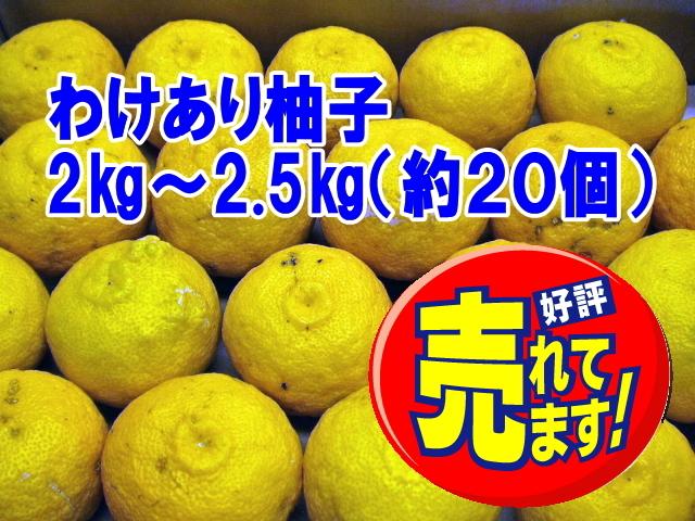 【わけあり柚子/2~2.5kg 約20玉】