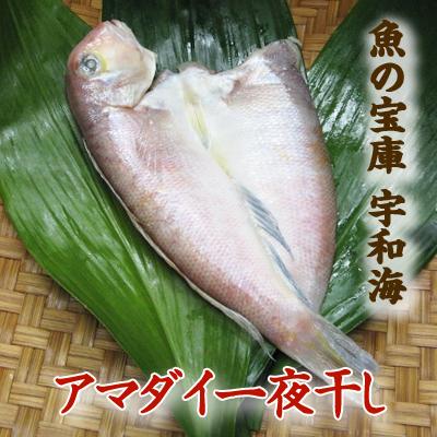 【送料別】【天然魚】宇和海朝獲れ鮮魚の一夜干しアマダイ1枚