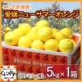 「ファミリー小夏5」【送料無料】愛媛西宇和産ニューサマーオレンジ(小夏) ファミリー用5kg