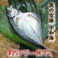 【送料別】【天然魚】宇和海朝獲れ鮮魚の一夜干し釣アジ1枚