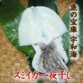 【送料別】【天然魚】宇和海朝獲れ鮮魚の一夜干し釣スミイカ1枚