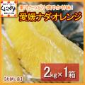「お試しナダオレンジ2」【送料無料】愛媛西宇和産ナダオレンジ お試し2kg 冷やして食べるとひんやりジューシー