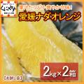 「お試しナダオレンジ2×2」【送料無料】愛媛西宇和産ナダオレンジ お試し4kg(2kg×2箱)冷やして食べるとひんやりジューシー