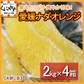 「お試しナダオレンジ2×4」【送料無料】愛媛西宇和産ナダオレンジ お試し8kg(2kg×4箱)冷やして食べるとひんやりジューシー