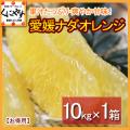 「お得ナダオレンジ10」【送料無料】愛媛西宇和産ナダオレンジ お得用 10kg 冷やして食べるとひんやりジューシー