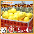 「訳あり小夏5×4」【送料無料】訳あり愛媛ニューサマーオレンジ(小夏)20kg(5kg×4箱),のしギフト対応不可