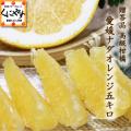 「贈答ナダオレンジ5」【送料無料】【高級果物】【贈答品】愛媛西宇和産ナダオレンジ 贈答用5kg 冷やして食べるとひんやりジューシー