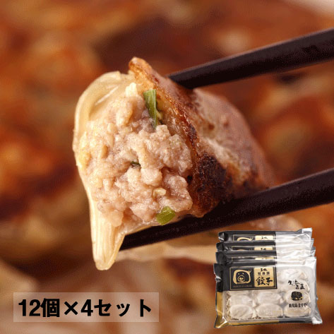 鹿児島ますや短鼻豚 黒豚生餃子48個セット/K-01