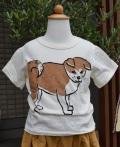 ~SALE~ nini  あきたいぬTシャツ オフ(80~120センチ)