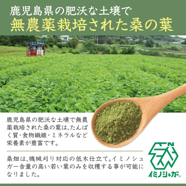 国産原料100%桑の葉青汁紹介文1