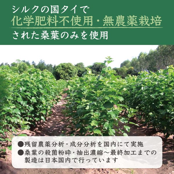 桑の葉エキスの原料原産国はタイ
