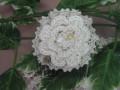 コットン毛糸のコサージュのコーム