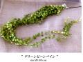 【造花】 【フェイクグリーン】 吊るして可愛い グリーンビーンバイン