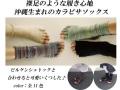 カラビサソックス(KARABISA SOCKS) ありそうでなかったおしゃれで可愛い五本指なしソックス 新色含む全11色