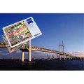 ツァイス VisuCard クレジットカード型ルーペ