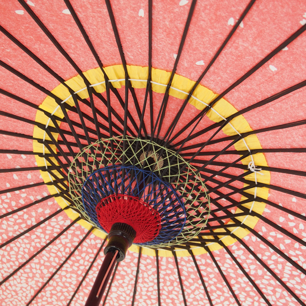 紙傘 桜渦 白地ピンク 特選