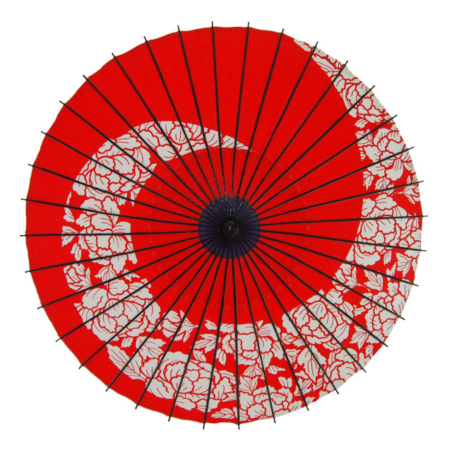 布傘 牡丹渦 朱色