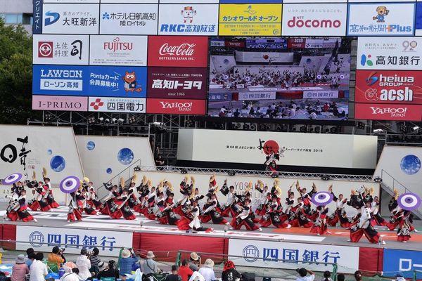 和傘の実用提供写真2
