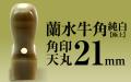 角印 蘭水牛角・純白(極上) 天丸21