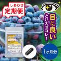 【定期便】 ブルーベリーQ10 1ヵ月分