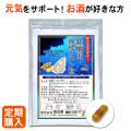 【定期便】牡蠣肉・発酵ウコン粒 1か月分 90粒