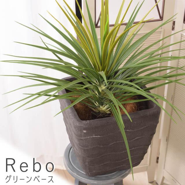 Rebo(レボ) グリーンベース