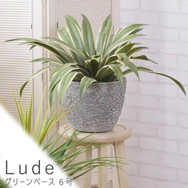 Lude(ルード) グリーンベース