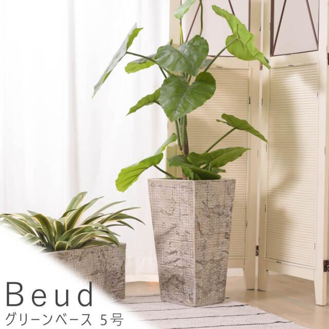 Beud (ベウド) グリーンベース 5号