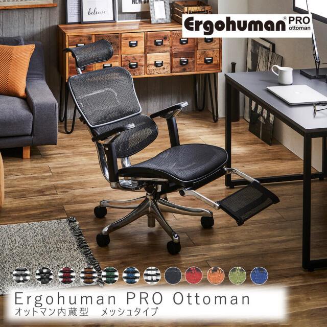 Ergohuman PRO Ottoman メッシュタイプ
