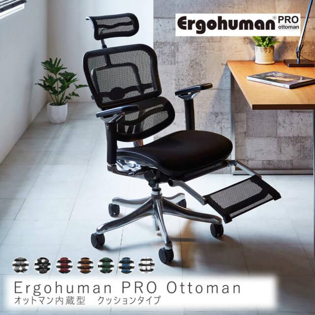 Ergohuman PRO Ottoman クッションタイプ