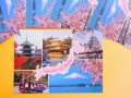 【日本のおみやげ】ポストカード【Souvenir of Japan/写真】(バラ単品)透明OPP袋入り