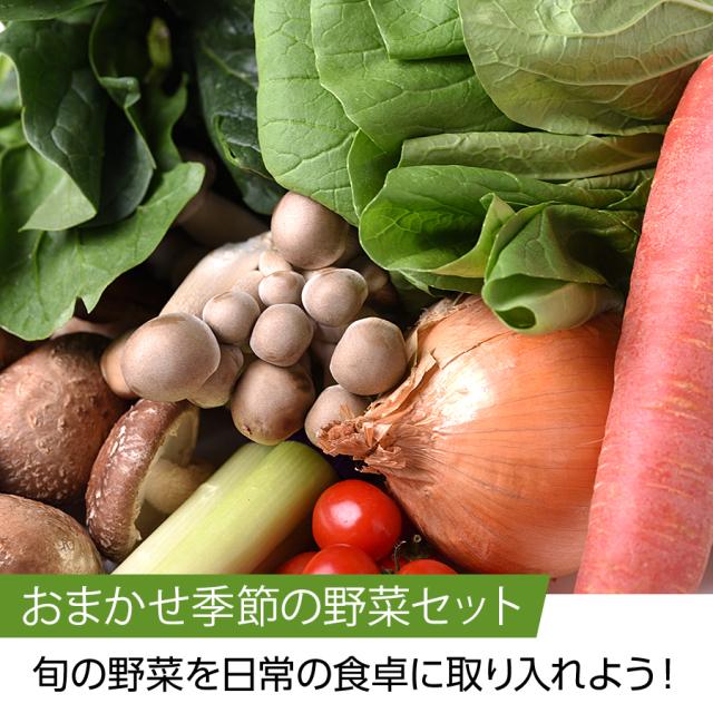 野菜セット【京野菜 四寅】